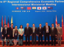 8th RCEP Inter-Sessional Ministerial