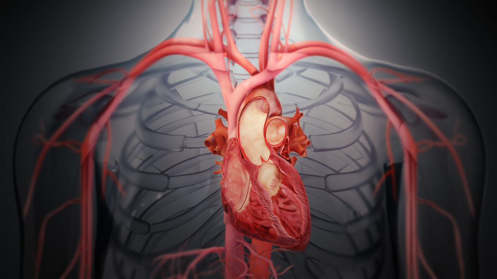 Heart patients can catch COVID infection faster 1