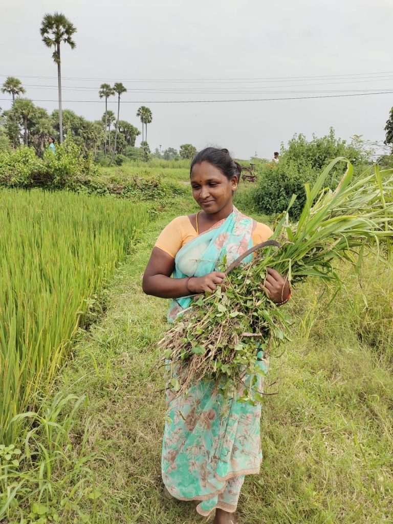 49,965 crore transferred directly into farmers' account across India 1