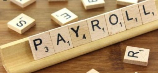 Payroll Reporting in India – A Formal Employment Perspective 1