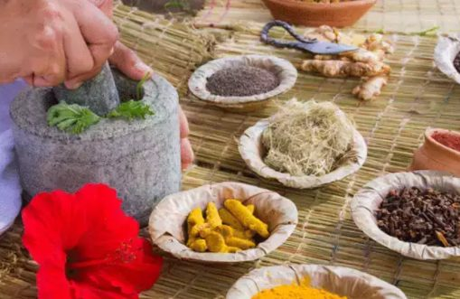 Significance of Ayush in Boosting Immunity 1