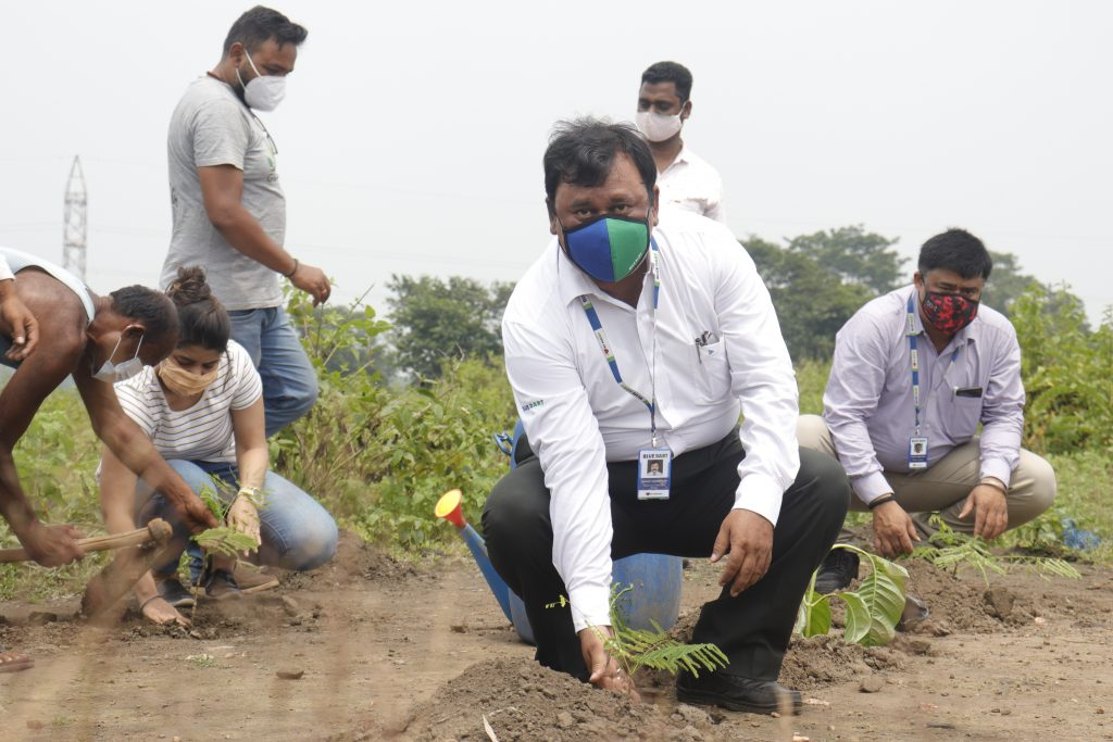 Blue Dart plants over 1,00,000 trees for Elephants in Dalma Wildlife Sanctuary in Jharkhand on World Elephant Day 1